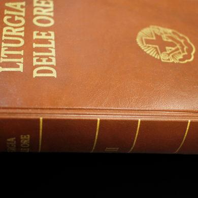 cubiertas para biblias